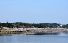 平筒沼ふれあい公園の風景