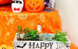 HAPPY☆HALLOWEEN