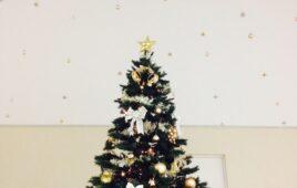 。・+・。*クリスマスディスプレイ*・。+*。